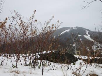 志賀高原11月末、写真1