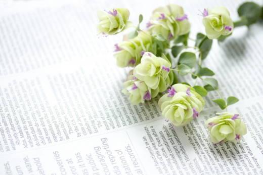 英字新聞と花 写真