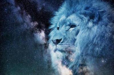 宇宙とライオン